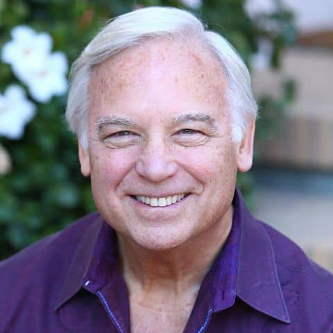Jack Canfield, Chicken Soup for the Soul, The Success Principles
